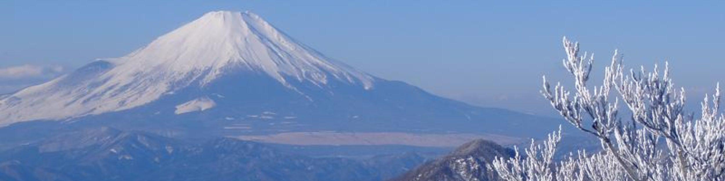 Kanagawa山三昧